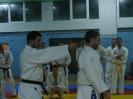 Семинар по Ju Jitsu